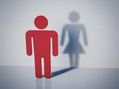 Male symbol with female symbol shadow.