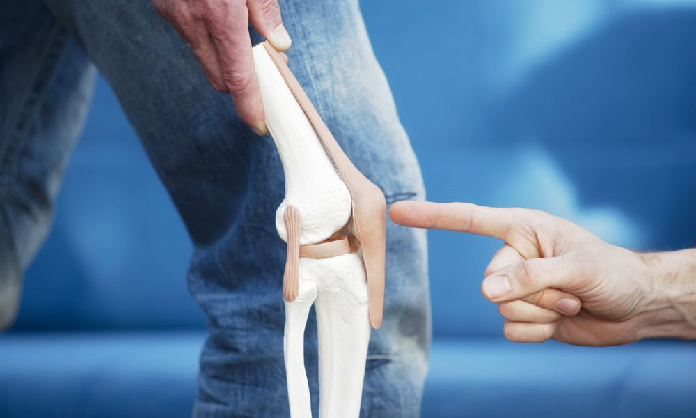 Man pointing to a model of a patella