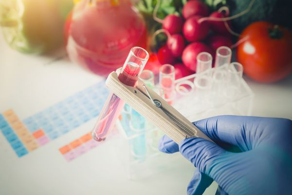 test tubes and vegetables