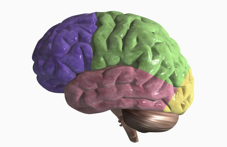 Behavioral Variant Frontotemporal Dementia (Pick's Disease)