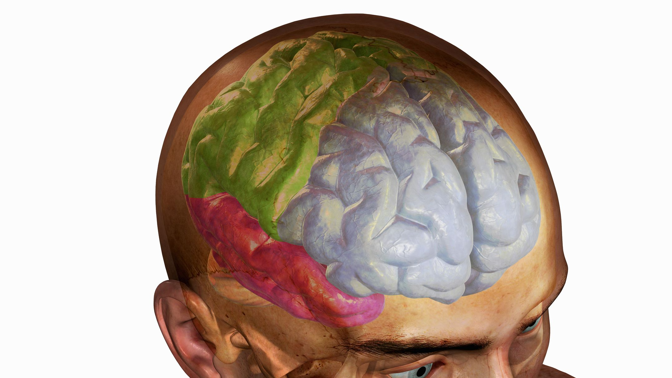 Teens With Autism Brain Injuries And >> Frontal Lobe Head Trauma Effects And Treatment