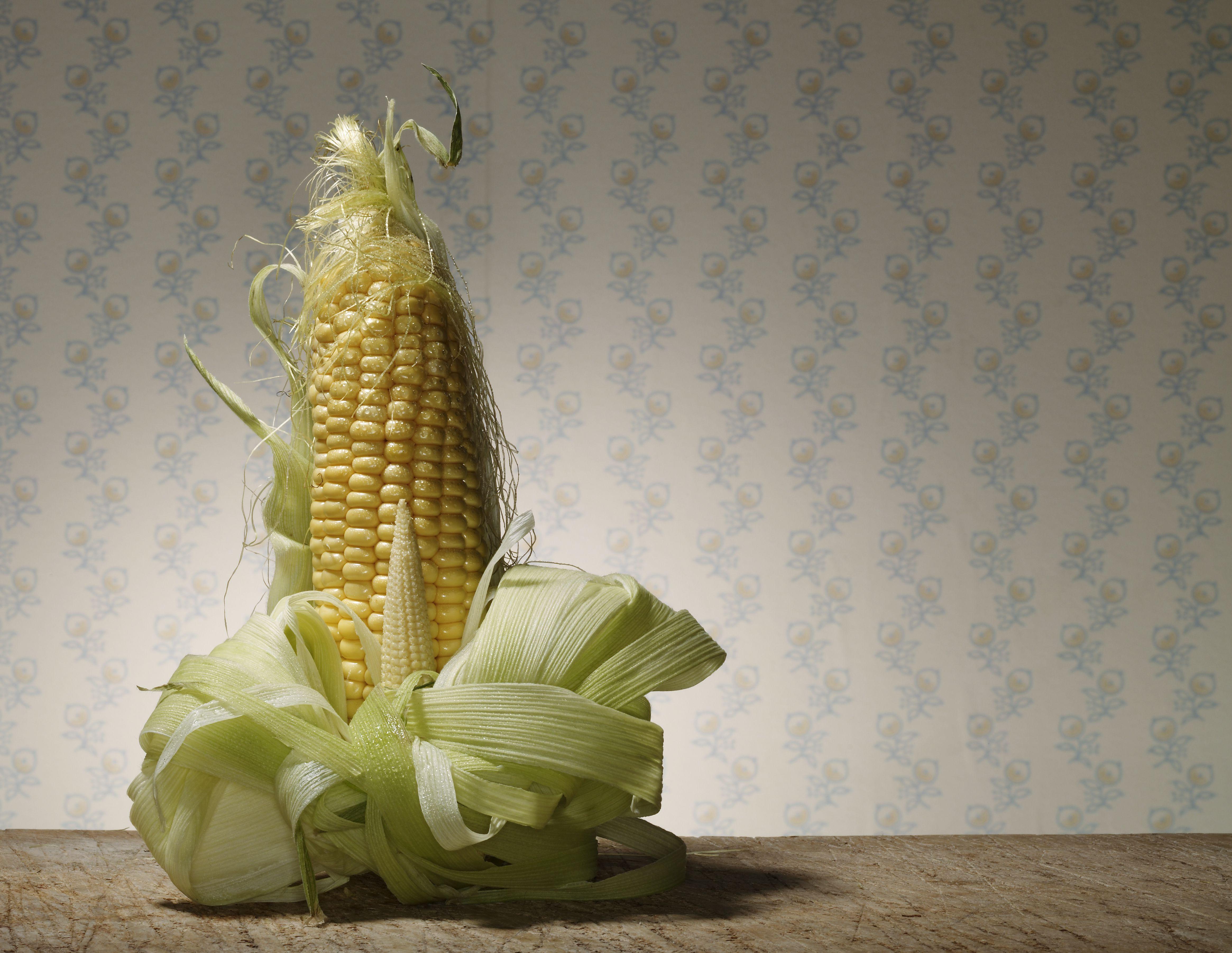 Ear of corn artistically presented