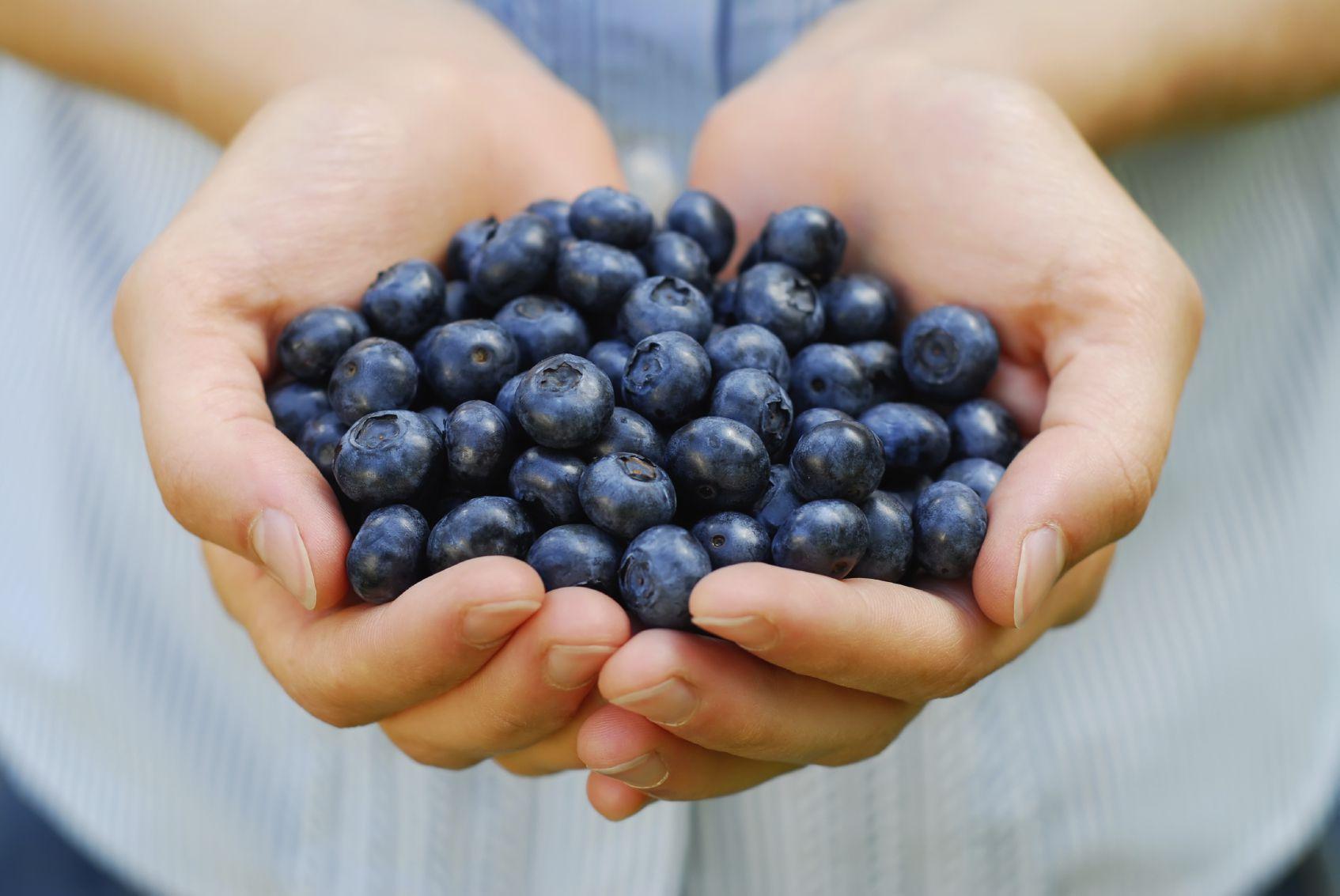 Handful of blueberries.