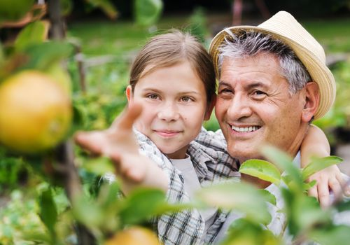 Man picking fruit with his granddaughter