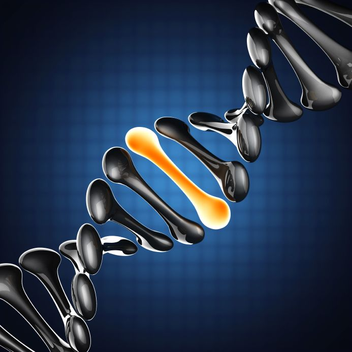 diagram of a strand of DNA highlighting a gene