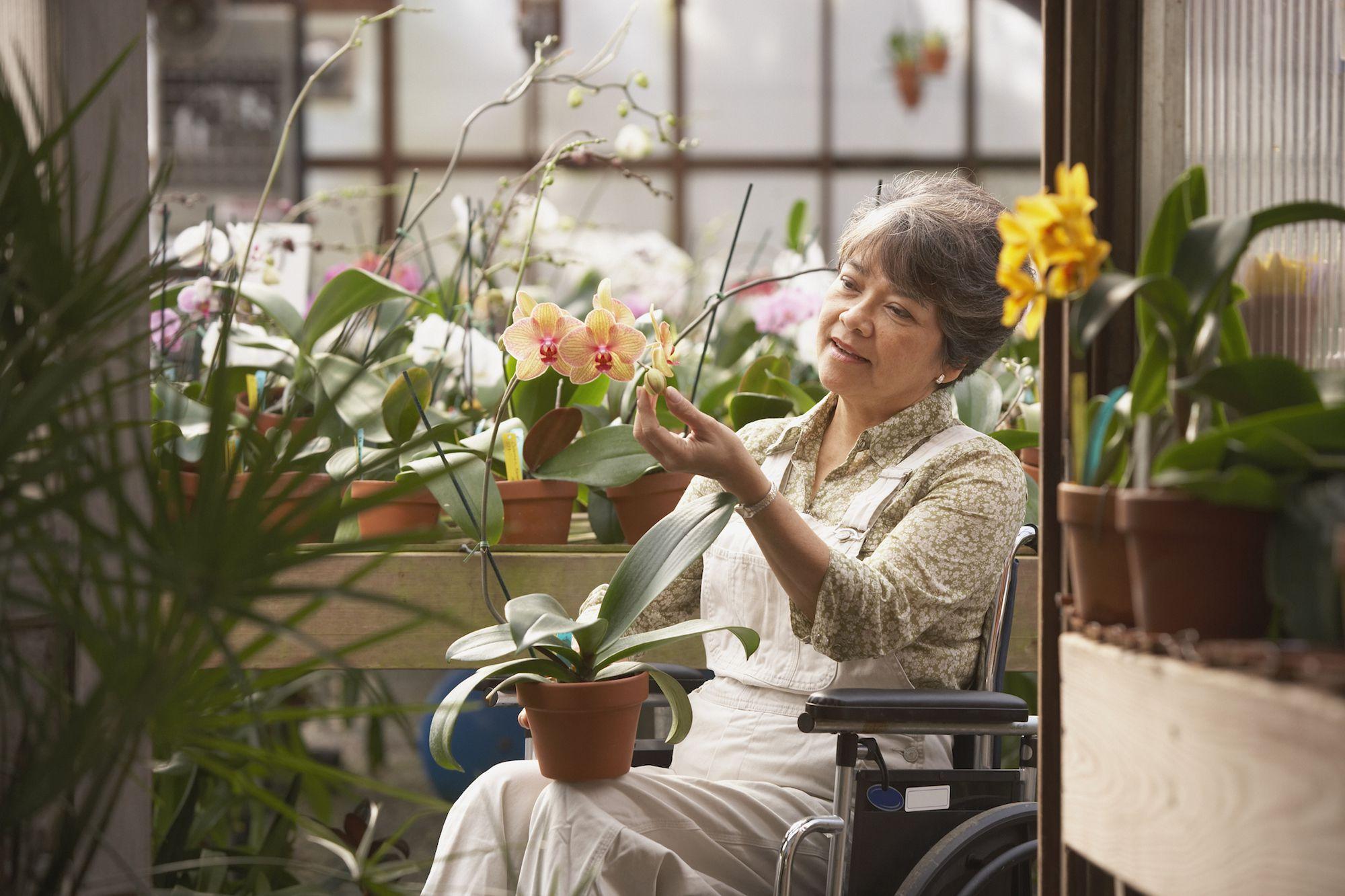 Ergonomic And Adaptive Gardening Tools