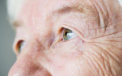 The lens of the eye