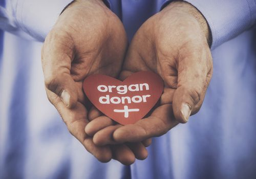 Person holding a paper heart that says organ donor