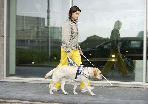 Blind woman and seeing eye dog walking on sidewalk