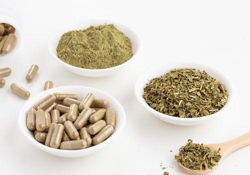 Gymnema Sylvestre dried herb, capsules, and powder