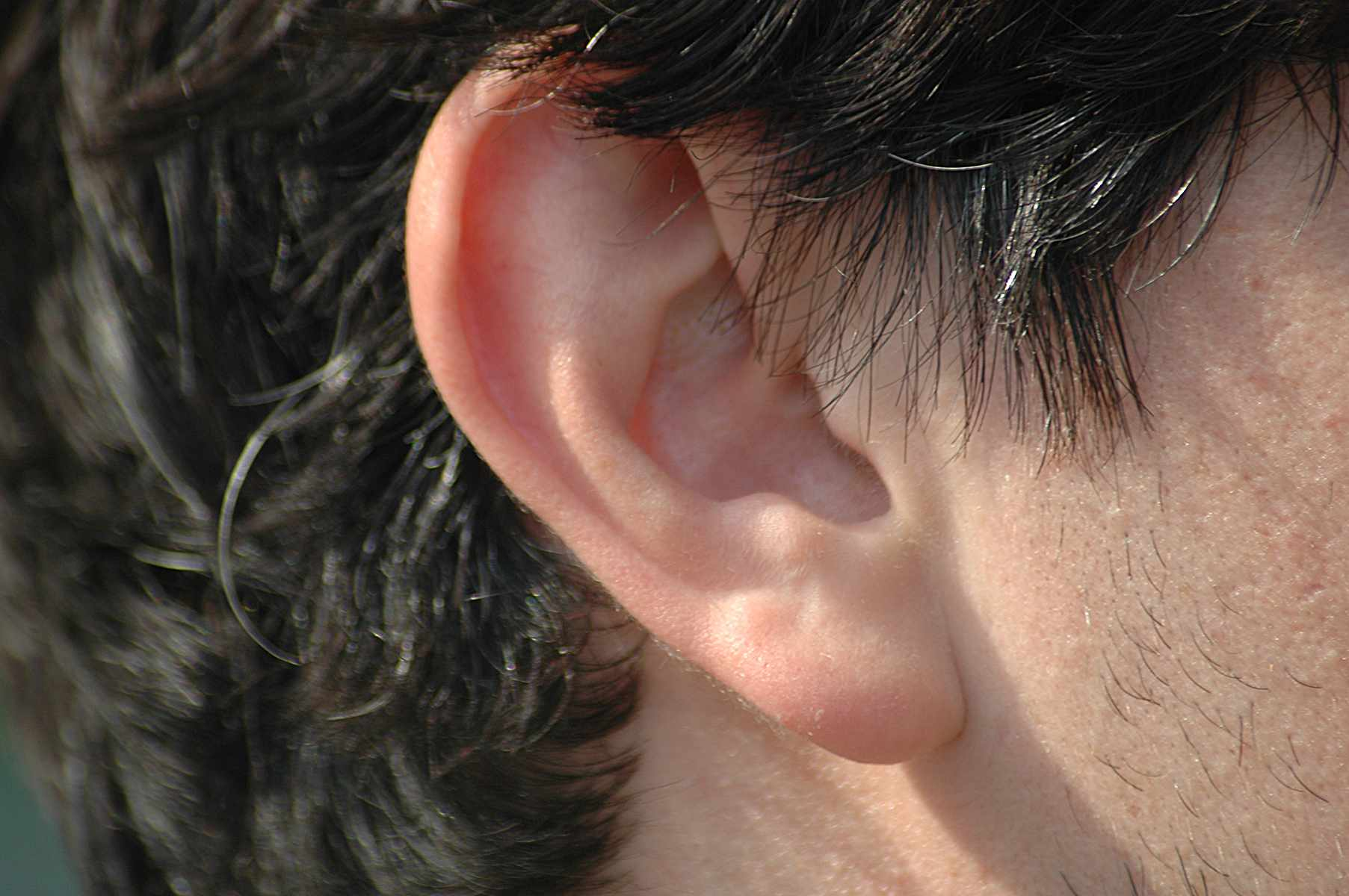 A white-presenting person's earlobe under a head of short, black and gray hair