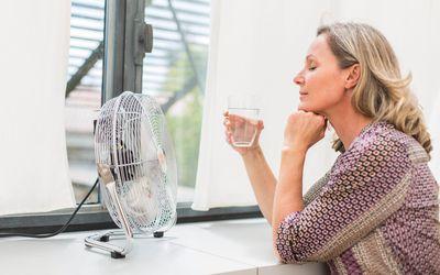 Woman using an electric fan.