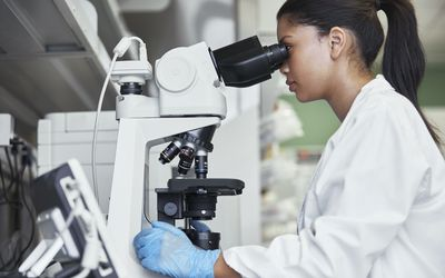 Doctor viewing a blood smear under a microscope