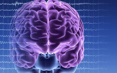Brain activity artwork