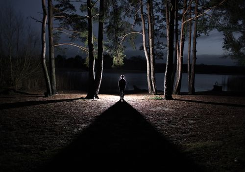 Boy standing in a forest backlit