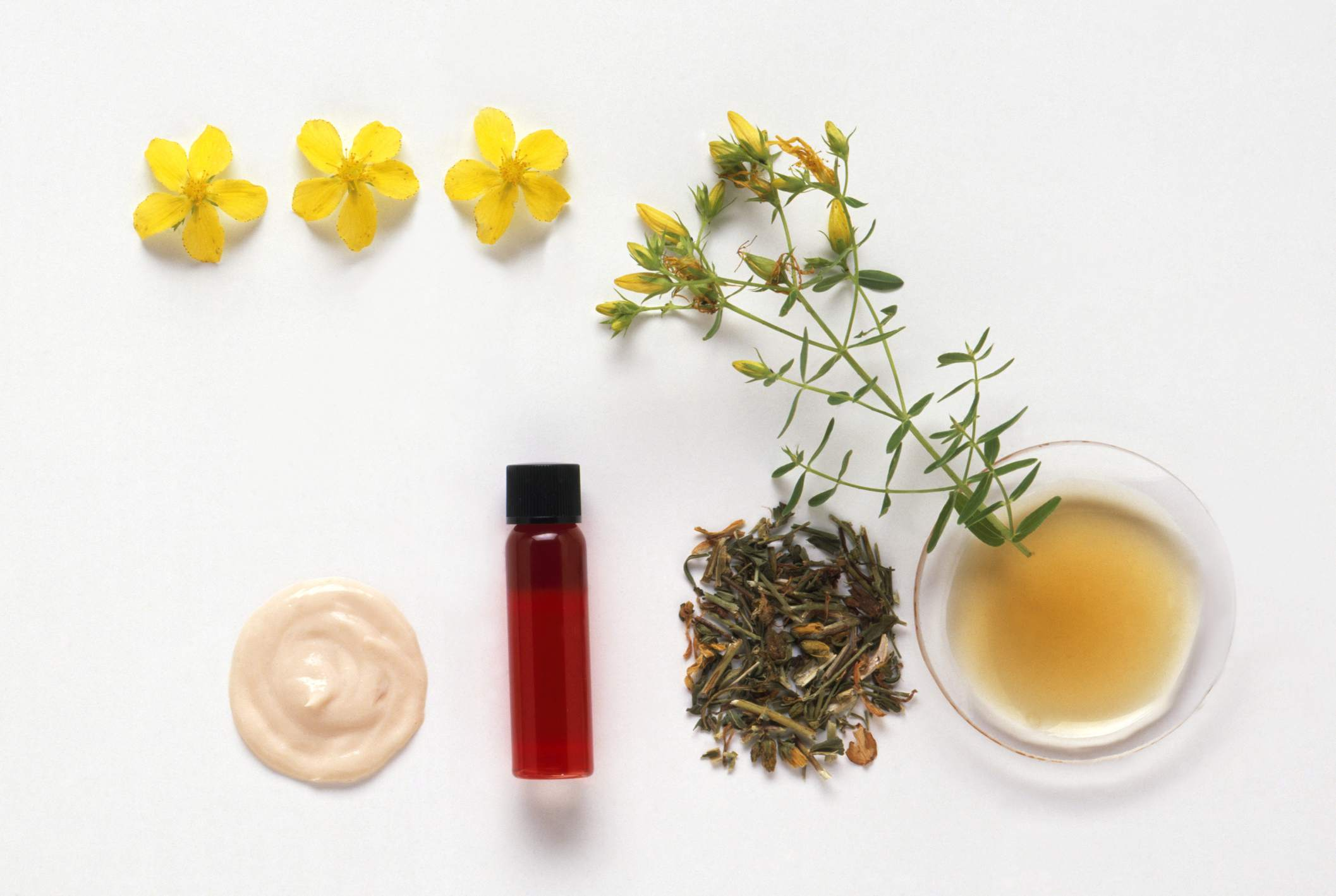 Hypericum perforatum (St John's wort), flowers, cream, infused oil in phial, fresh and dried aerial parts, and tincture in petri dish