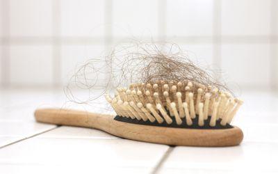 Brush full of hair