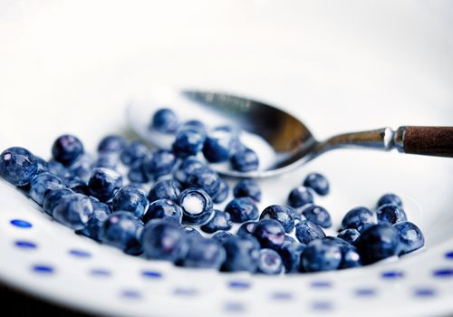 Bilberry and milk