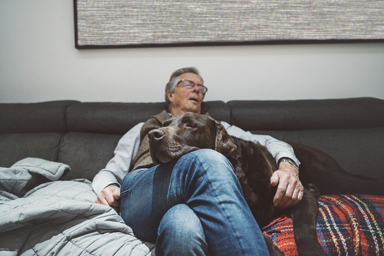 Senior man asleep on couch with his dog