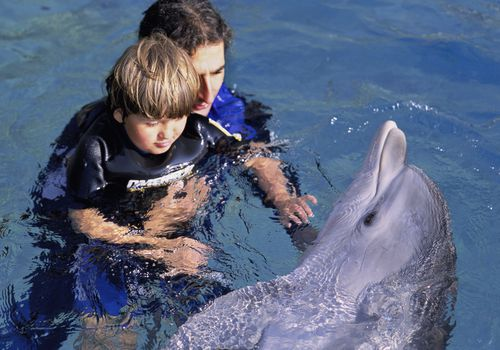 Autistic child receives therapy with dolphin trainer and Bottlenose Dolphin (Tursiops truncatus), Dolphin Reef, Eilat, Israel - Red Sea.