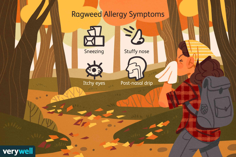Ragweed Allergy Symptoms