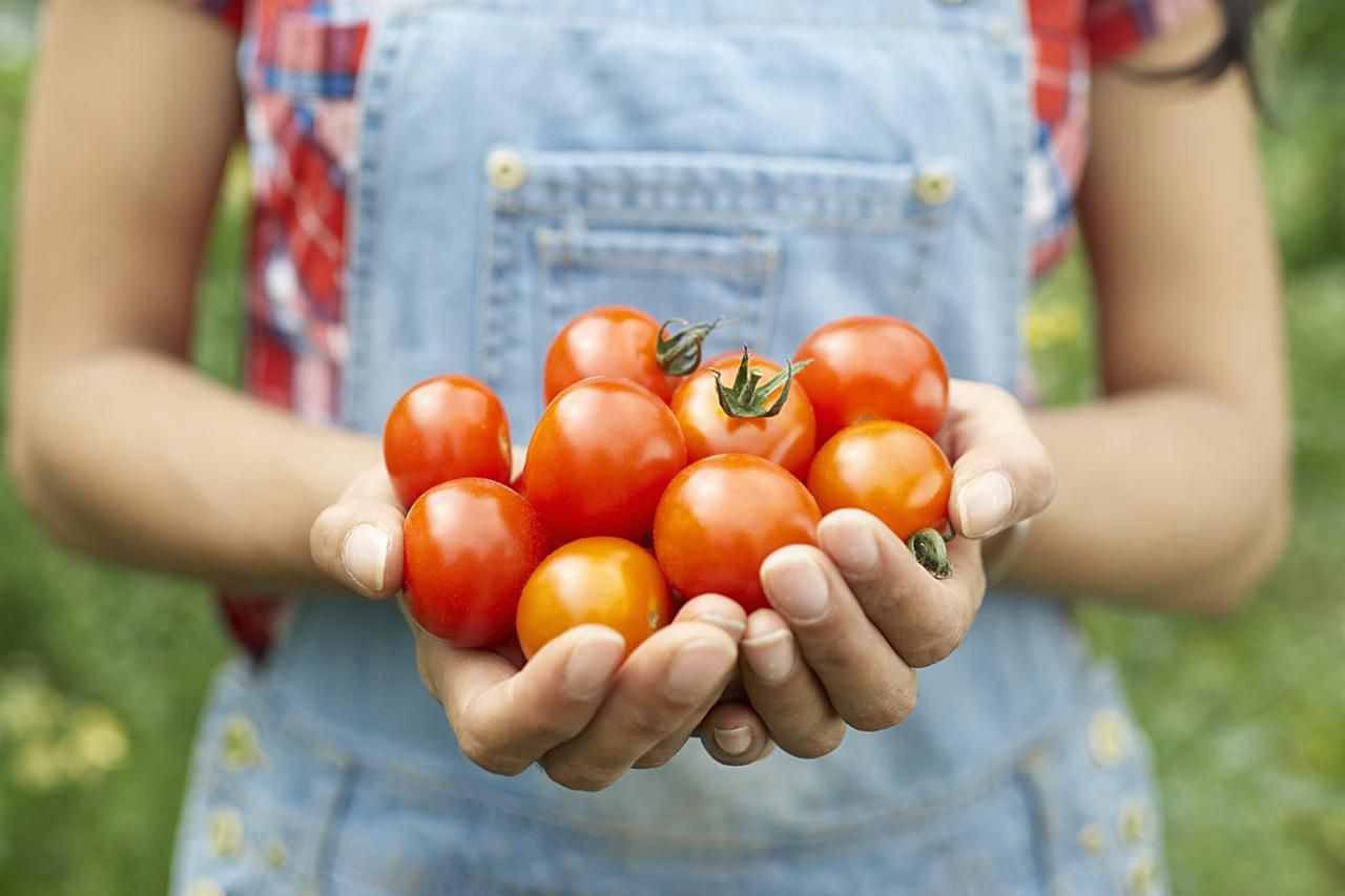 A young woman holding bright red tomatoes