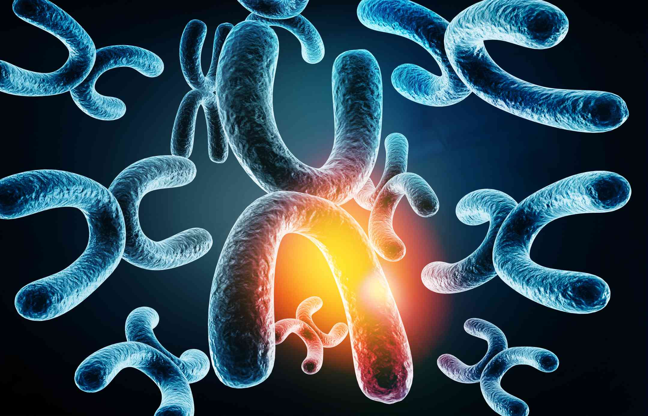 X chromosome with defective gene