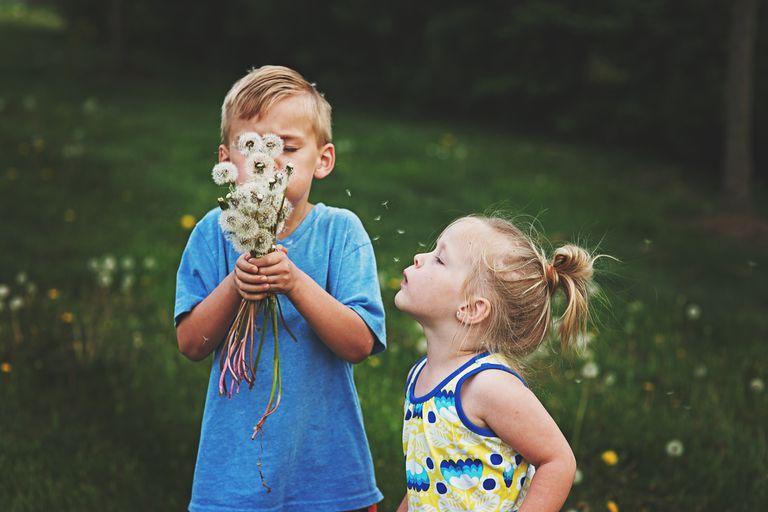 Children and dandelions