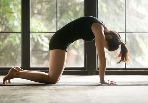 Woman doing yoga in cat pose