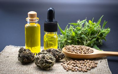 The idea of extracting marijuana oil for natural treatment of disease