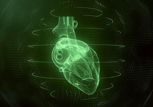 heart imaging in green