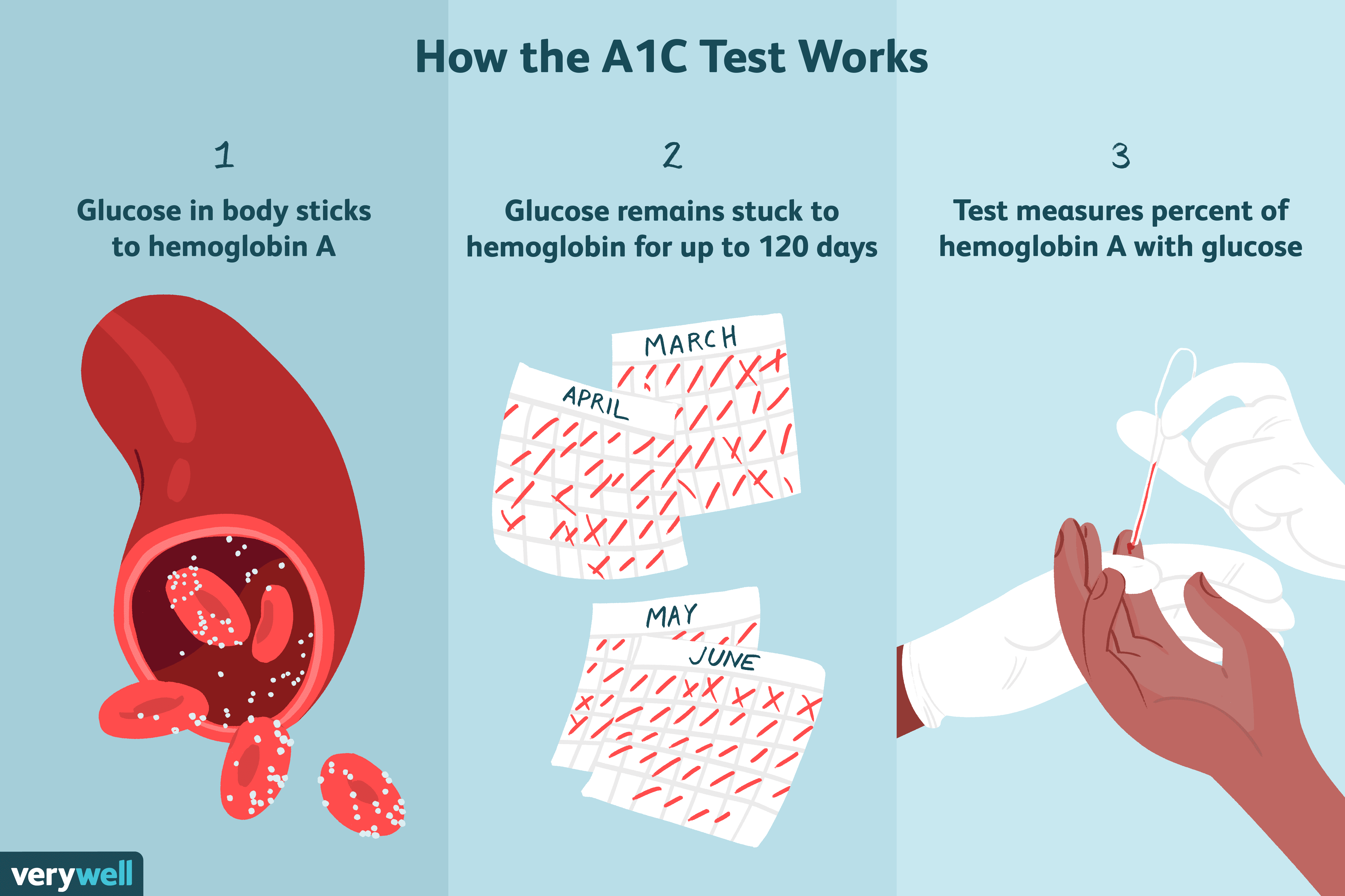 What Is The A1c Test