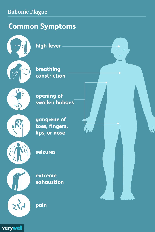 Bubonic plague symptoms