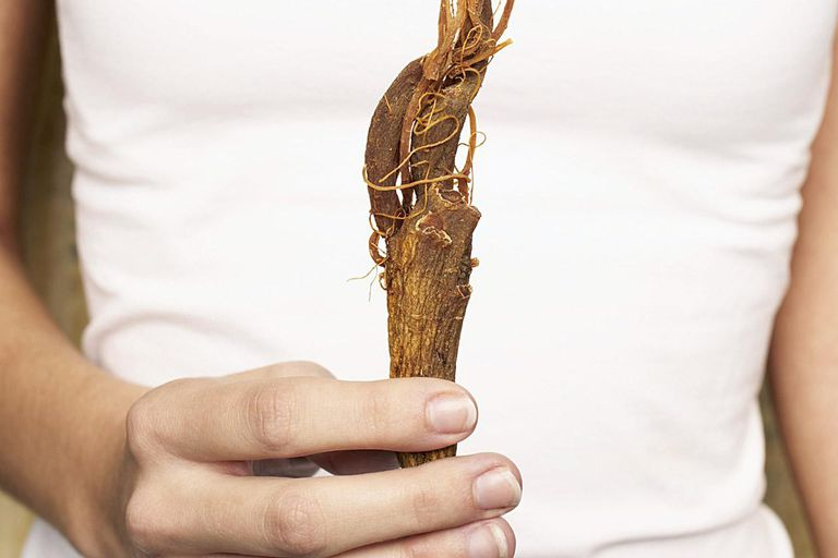Young woman holding ginseng, mid section (focus on ginseng)