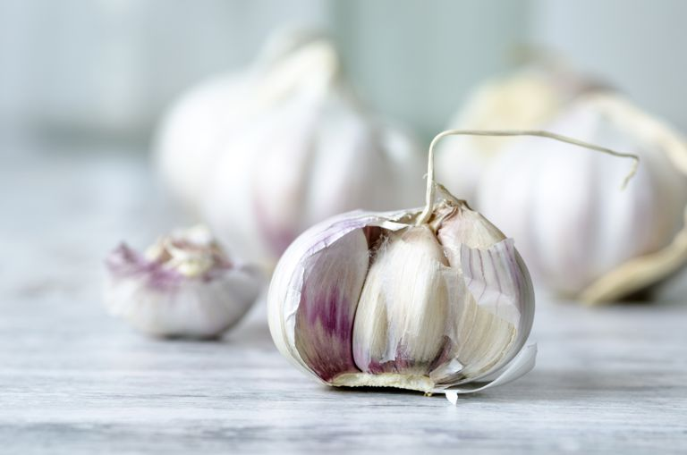 garlic for colds