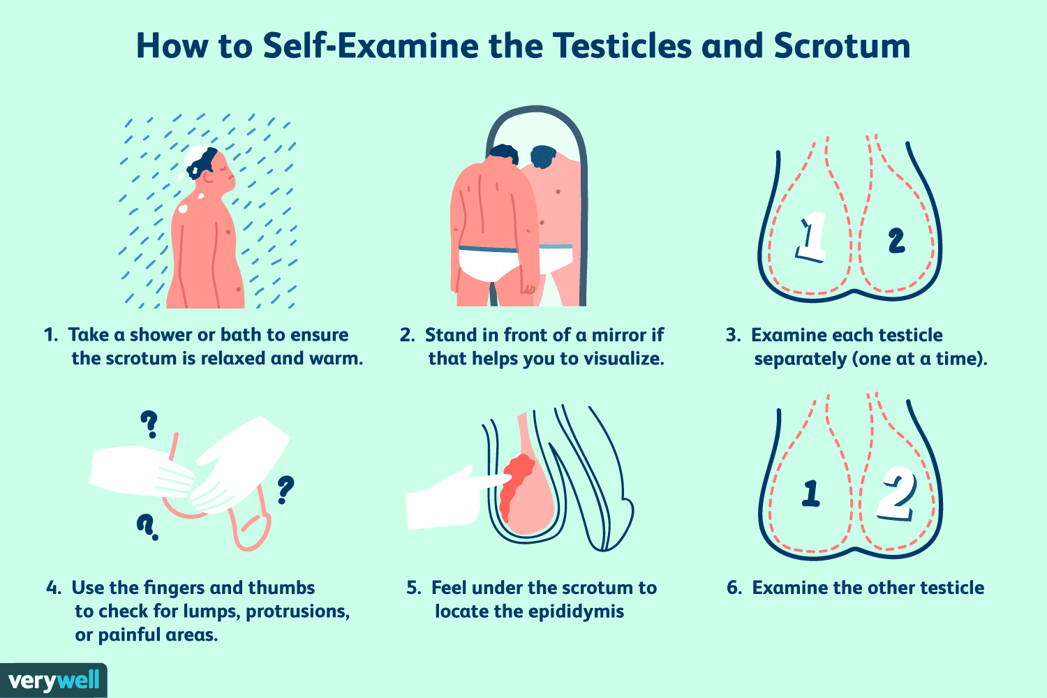 how to make your testicles grow bigger naturally