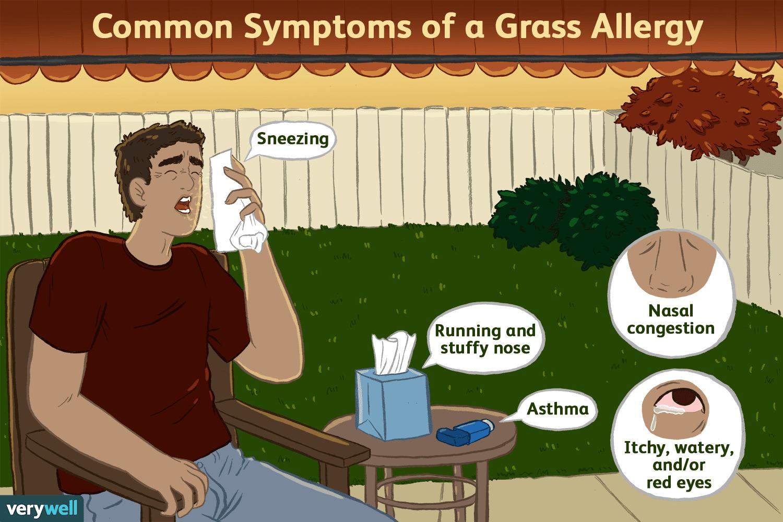 symptoms of a grass allergy