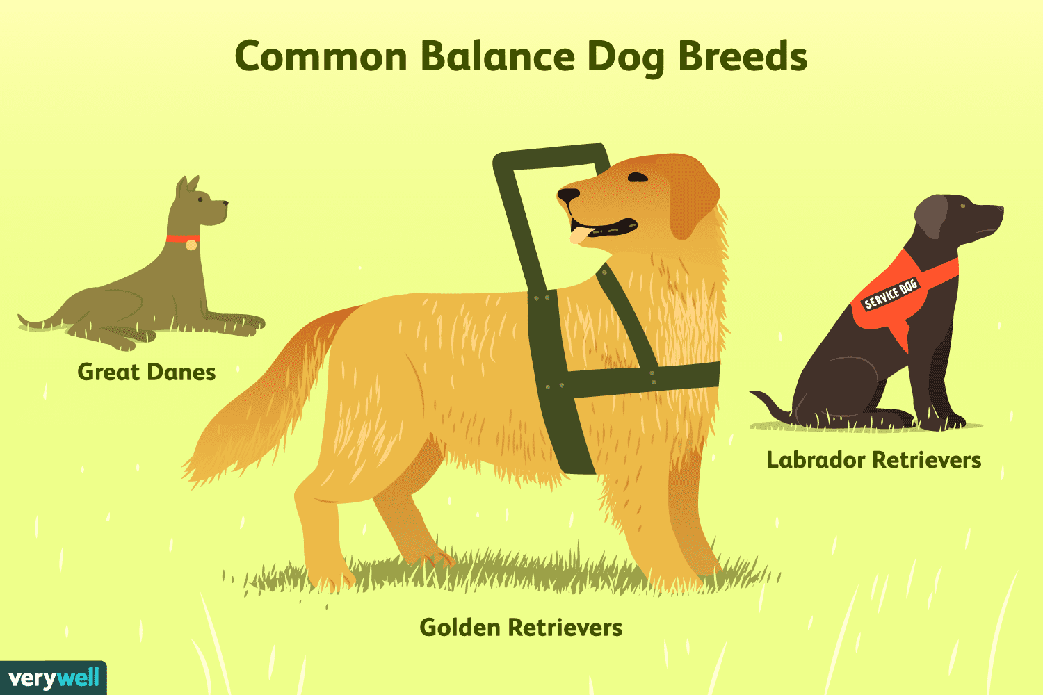 Balance Service Dogs for Multiple Sclerosis