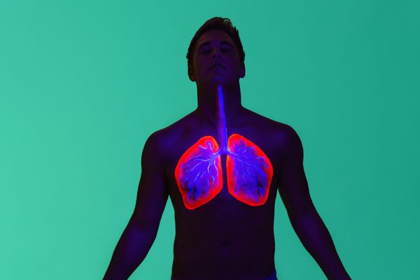 Ultraviolet diagram of lungs during inhalation