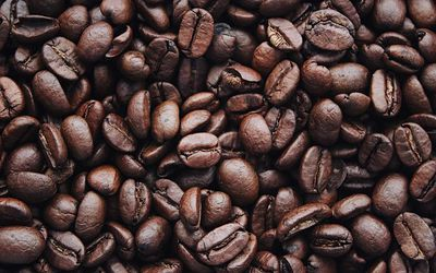 Close up macro photo of roasted coffee beans.