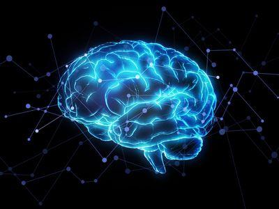 Artificial intelligence brain network