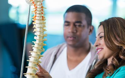 Medical professionals looking at a model of the spine