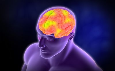 Brain activity (computer illustration)