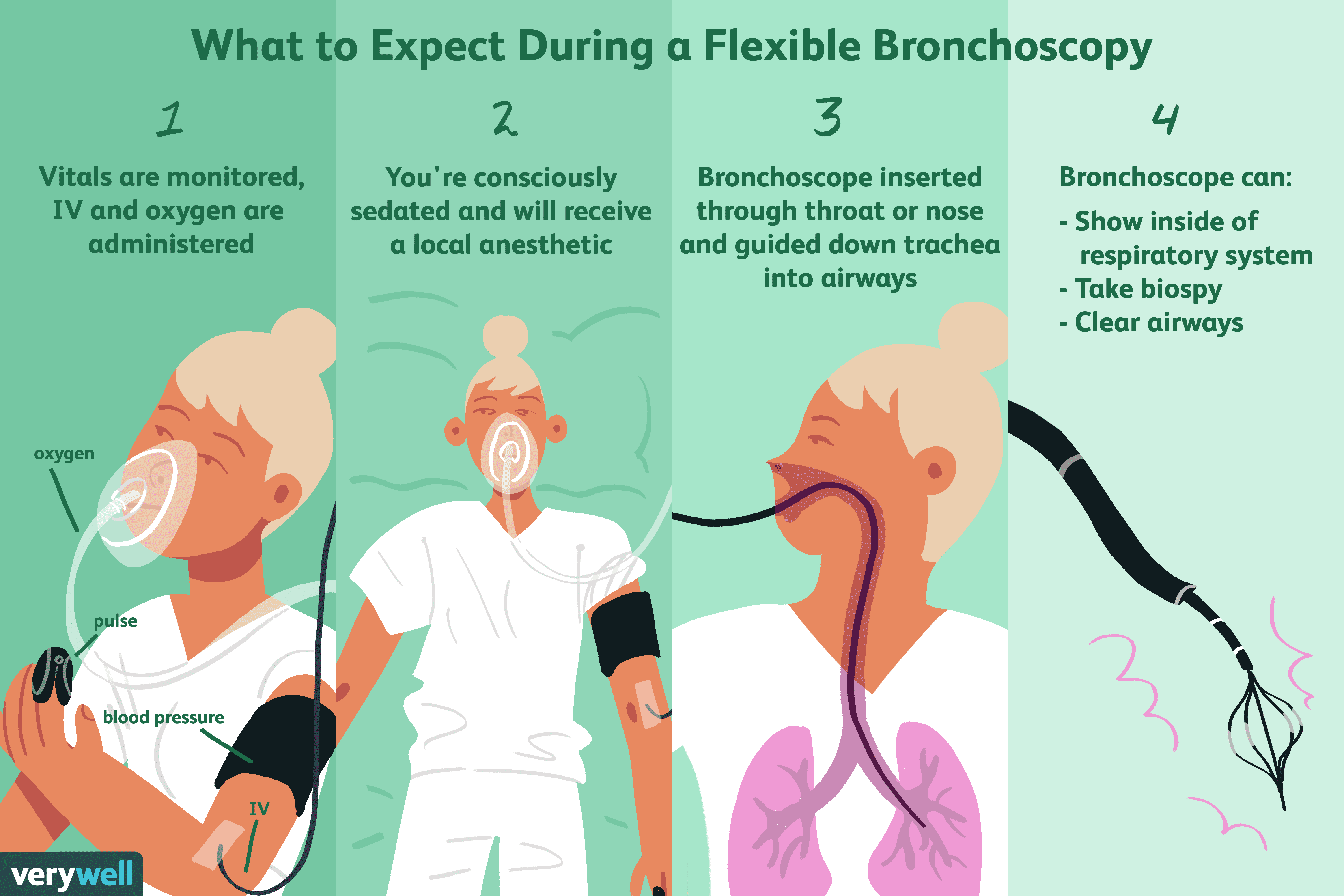 Bronchoscopy Uses Side Effects Procedure Results Respiratory System Function And Diagrams Breathing Oxygen Purpose Of The Test