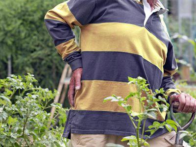 Senior Man Suffering From Backache Working In Vegetable Garden
