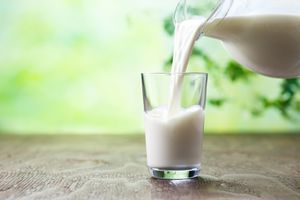 Lactose is a type of sugar found in milk