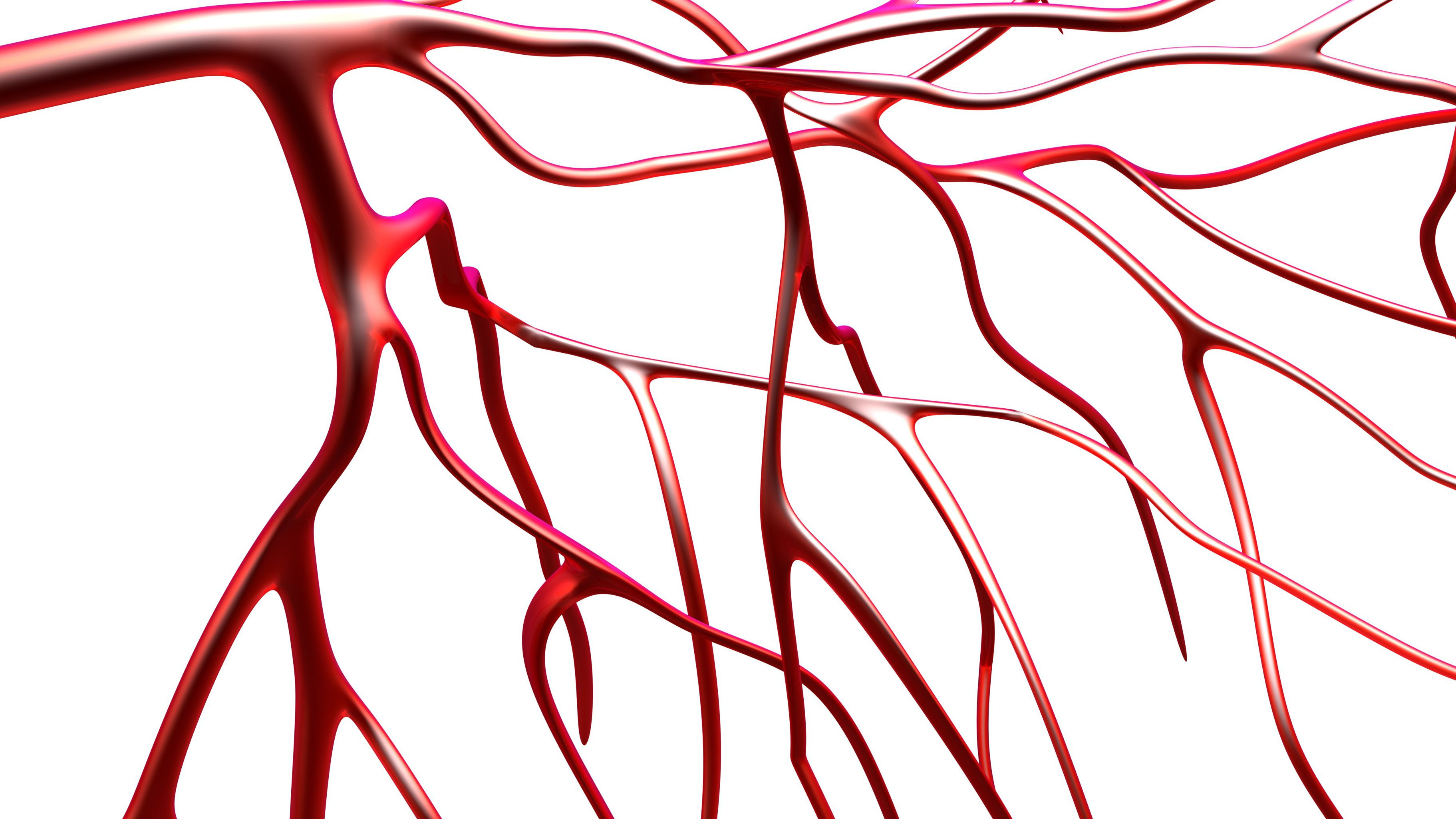 Symptoms of Endothelial Dysfunction