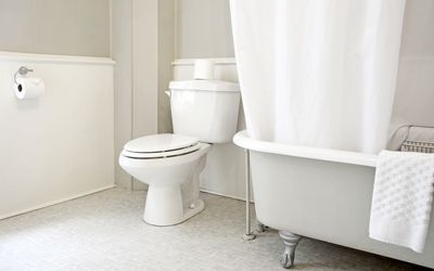 What It Means When Your Poop Floats