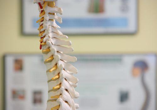 Spine & cervical spine