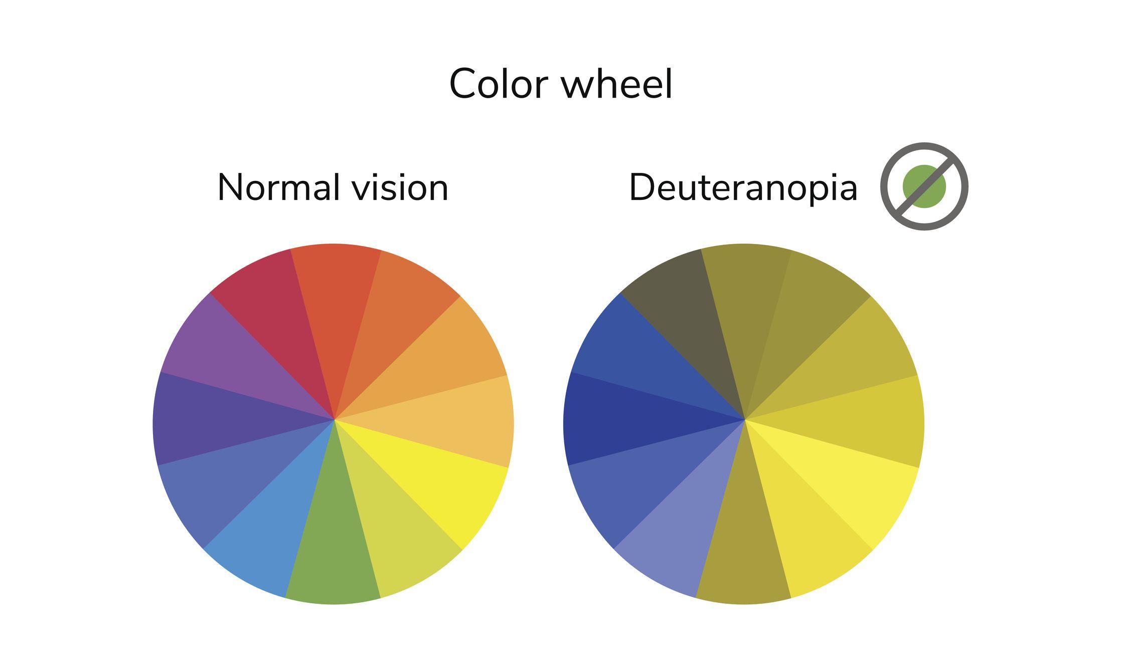color wheel showing normal vision and deuteranopia vision